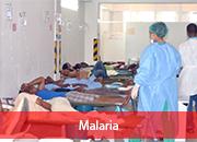 1.10.4.5-Malaria